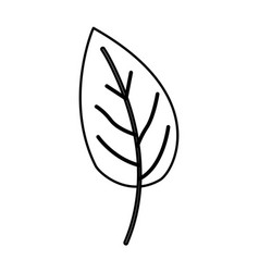 Sketch contour of simple leaf plant side view vector