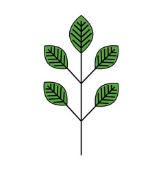 Leafs plant ecology icon vector
