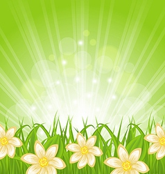 Spring background with green grass and flowers vector