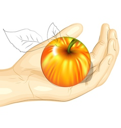 Male hand and apple vector