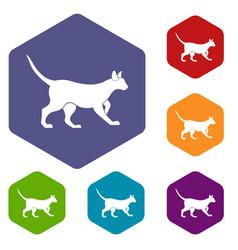 Cat icons set hexagon vector