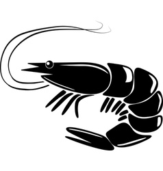 shrimp vector image vector image
