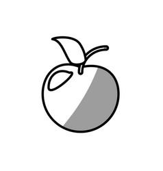 Fruit healthy food picnic shadow vector