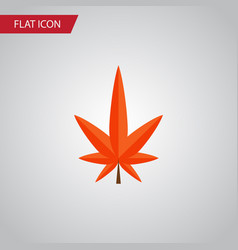Isolated alder flat icon aspen element can vector