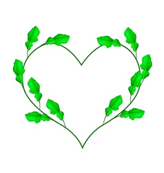 Kaffir lime leaves in a heart shape vector