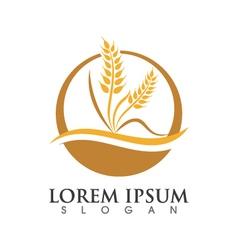 Wheat logo template vector