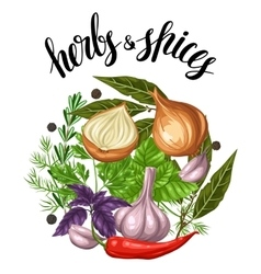 Background design with various herbs and spices vector