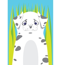 Dalmatian in the grass on blue background vector