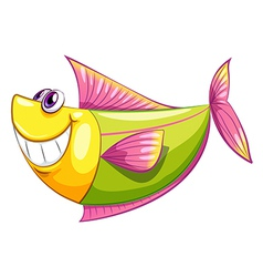 A smiling colorful aquatic fish vector
