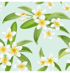 Tropical flowers and leaves pattern seamless vector