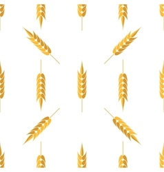 Seamless wheat pattern vector