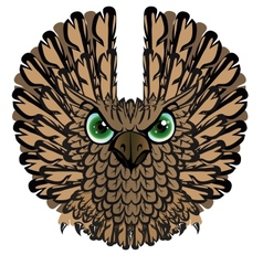 Nocturnal birds of prey Owl vector image