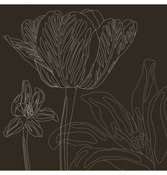 Stock floral background with tulip vector image vector image