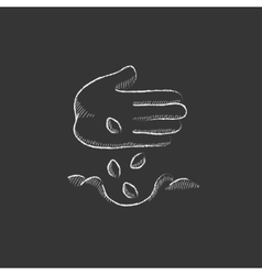 Hand planting seeds in ground drawn in chalk icon vector