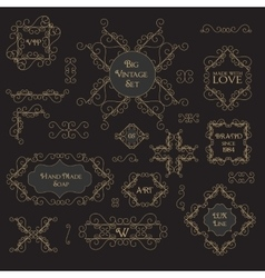 Vintage decorations design elements vector