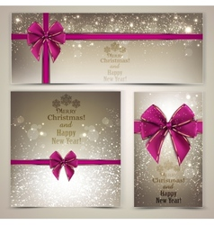 Greeting cards with beautiful bows and copy space vector image