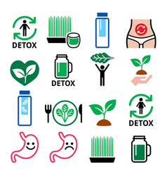 Detox body cleaning with juices vegetables or di vector