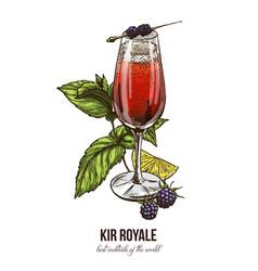 Kir royale cocktail with blackberries vector