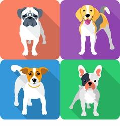 set dog icon flat design vector image vector image