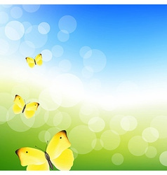 Blue Sky And Butterfly vector image
