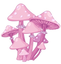 Magic toadstools vector