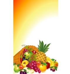 Cornucopia with fruit vector