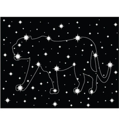 Star in the night sky vector