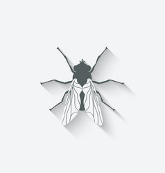 Fly insect icon vector