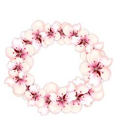 round frame template blooming sakura pink flowers vector image vector image