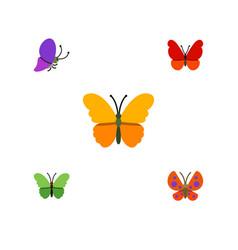 Flat monarch set of moth milkweed monarch and vector