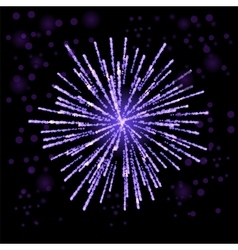 Firework lights up the sky on black vector