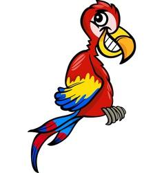 Macaw clip art cartoon vector