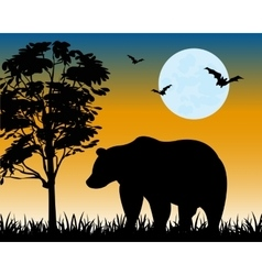 Silhouette bear on glade vector image vector image
