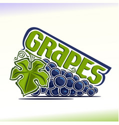 Grapes still life vector