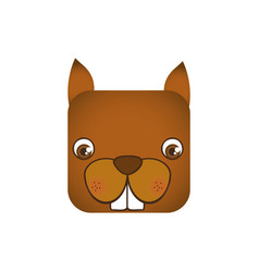Cute chipmunk animal head expression vector