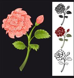 flower cartoon vector image vector image