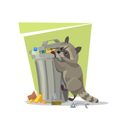 raccoon character looking for food trash can vector image vector image