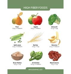 High fiber foods infographics vector