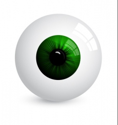 eyeball vector image