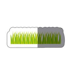 Grass icon image stock vector