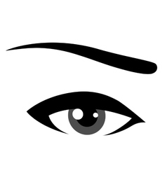 grey eye vector image vector image
