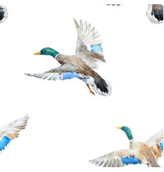 watercolor pattern with ducks vector image