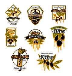 olive oil premium product trademark label set vector image