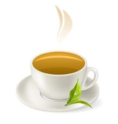 cup of hot green tea vector image