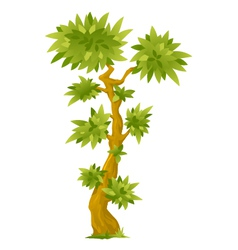 Cartoon exotic tree vector