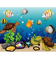 Many sea animals swimming underwater vector