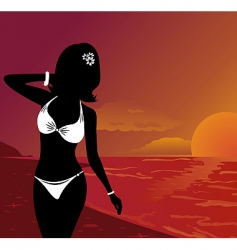 Sunset on beach vector