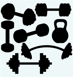 Barbell barbell and kettlebell vector image