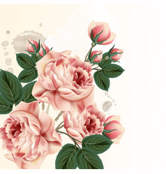 Fashion background with roses in vintage style vector