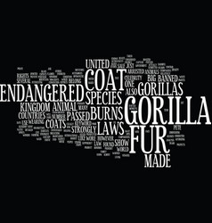 Gorilla fur coat text background word cloud vector